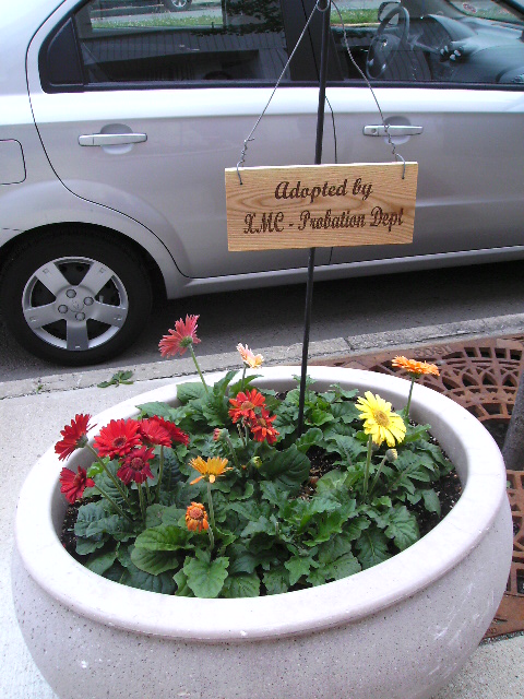Flower Pot with Adopted Sign