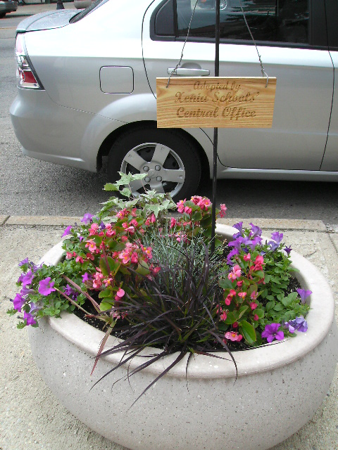 Flower Pot by Car with Adopted Sign
