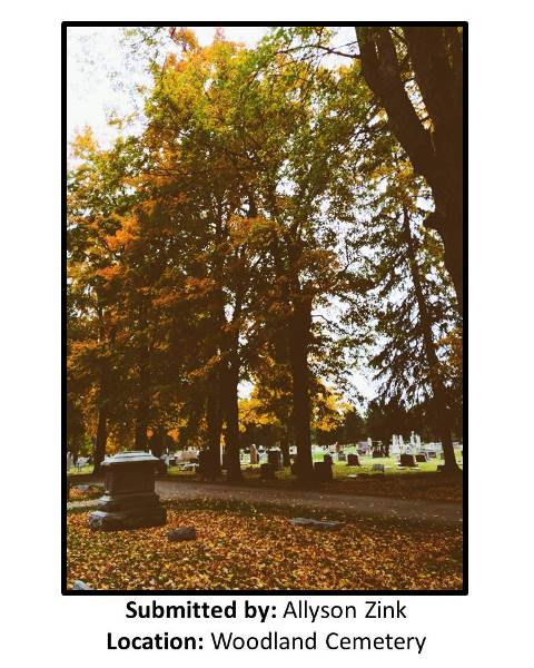 Submitted by Allyson Zink at Woodland Cemetery 3